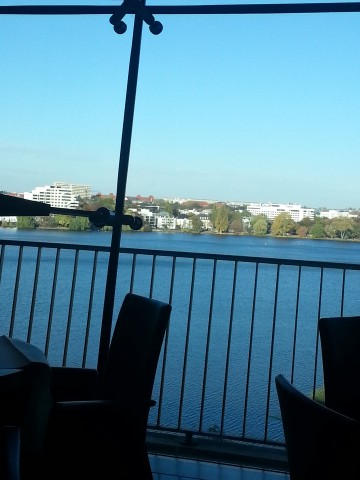 The view from our breakfast room...